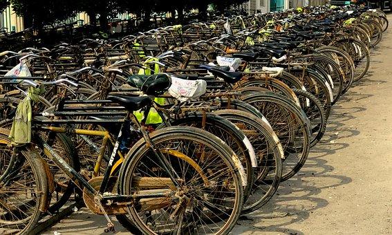Transportation, Cycling, Bike, Bicycle, Cycle, Ride