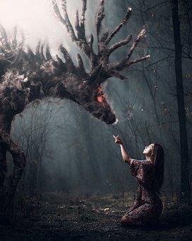 Girl, Forest, Deer, Fantasy, Story, Photoshop