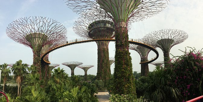 Singapore, Gardens By The Bay, Marina Bay, Supertree
