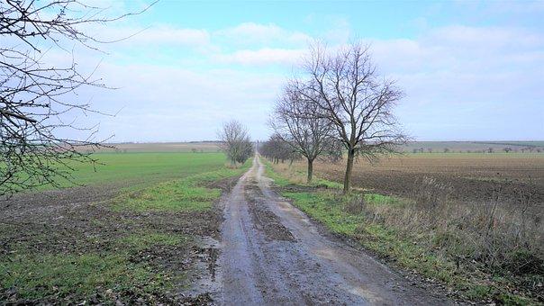 Field, Away, Landscape, Nature, Meadow, Sky, Road