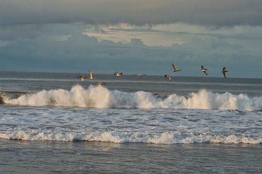 Costa Rica, Ocean, Waves, Costa, Landscape, Sun, Nature