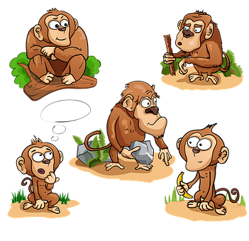 Monkey, Toque, Chimpanzee, Banana, Stick, Stone
