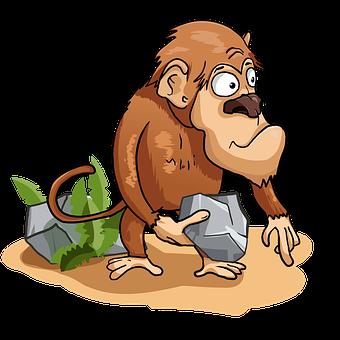 Monkey, Stone, Chimpanzee, Toque