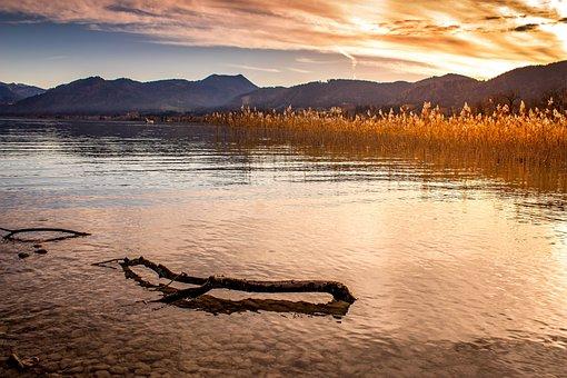 Lake, Alpine, Tegernsee, Autumn, Panorama, Water, Log