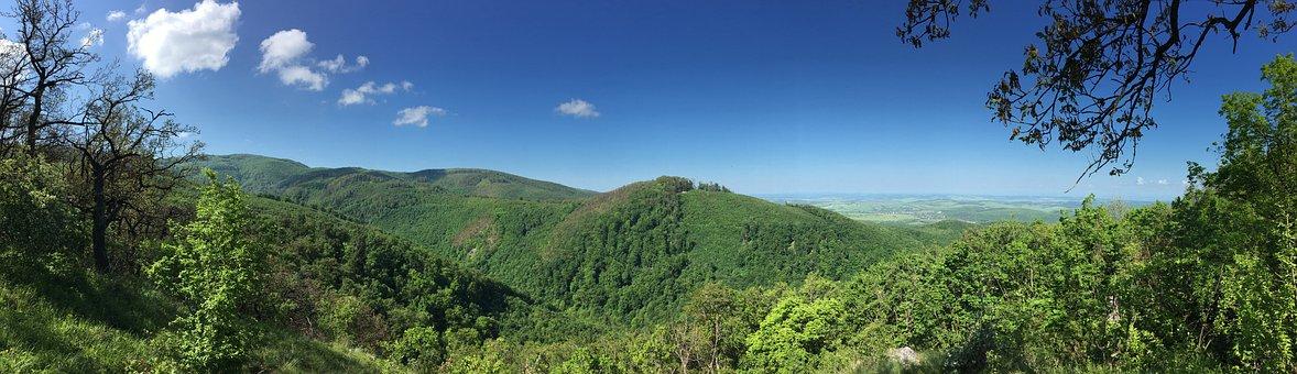 Summer, Panorama, Nature, Hill