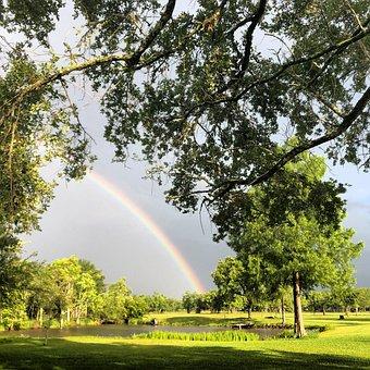 Rainbow, Weather, Duck Pond, Pond, Texas, Sky, Rain