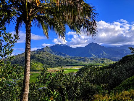 Kauai, Hawaii, Nature, Landscape, Tropical, Scenic