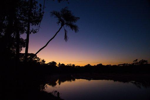 The River's Fish And, Aurora, Brazil, Goiás, Landscape
