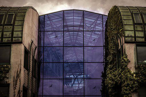 The Glass House, Architecture, Modern, Ivy, Library