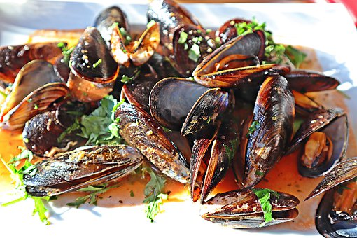 Mussels, Cozze, Italy, Holidays, Vacations, Sea Animals