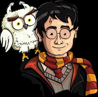 Harry Potter, Fan Art, The Wizard, Owl, Harry, Potter