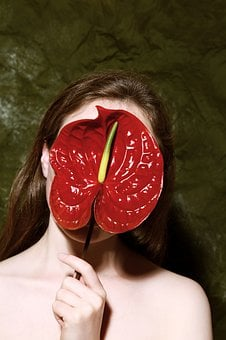 Exotic, Red Flower, Anthurium, Nature, Plant, Woman