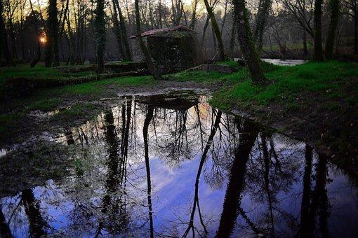The River Man, You Will Love, Rio, Romantic, Walk