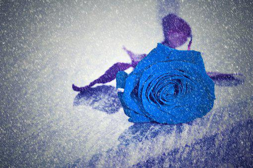 Blue Rose, Snowy, Missing, Remembering, Lost Love