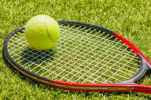 Tennis, Tennis Racket, Tennis Ball, Ball, Sports, Sport