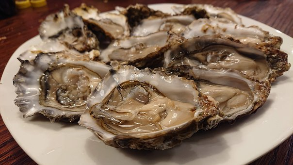 Oysters, Crustaceans, Mussels, Seashell, A Delicacy