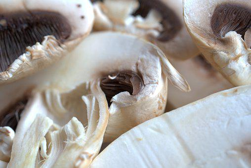 Mushroom, Fresh, Delicious, Cook, Kitchen, Edible