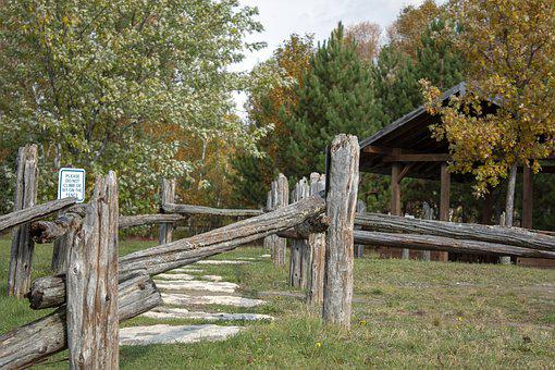 Fence, Fall, Country, Tress