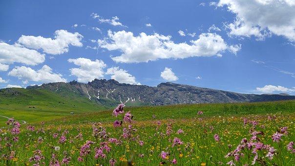 Mountains, South Tyrol, Seiser Alm, Dolomites, Nature