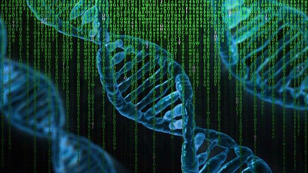 Dna, Matrix, Genetics, Control, Biology, Warning