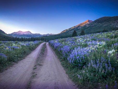 Dirt Road, Mountains, Landscape, Nature, Road, Path