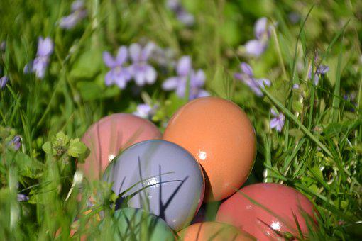 Easter Eggs, Easter Nest, Easter Greeting