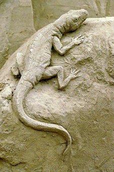 Salamander, Amphibian, Fauna, Sand Sculpture, Sand