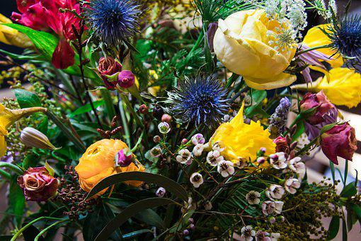 Fresh, Hipster, Floral, Nature, Blossom, Summer