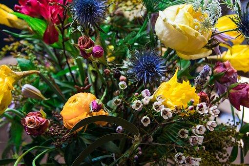 Morning, Natural, Bouquet, Background, Nature, Sunrise
