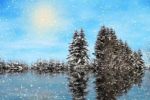 Winter, Snow, Nature, Landscape