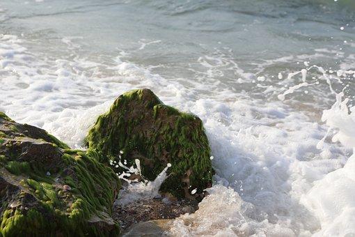 Sea, Water, Beach, Blue, Sand