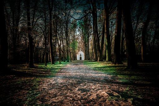 Chapel, Forest, Park, Religion, Mount St, Anna, Opole