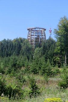 The Tree Top Walk, Gemunden, Salzkammergut, Austria