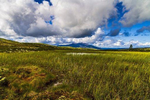 Mountain, Heather, Sky, Clouds, Summer