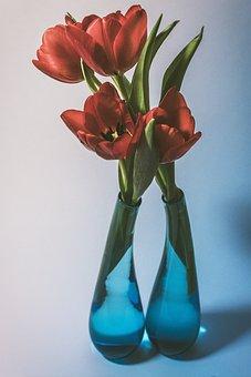 Tulip, Tulip Bouquet, Glass Vase, Blue, Spring Flower