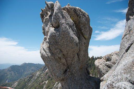 Sequoia National Park, Freedom, Hiking, Adventure