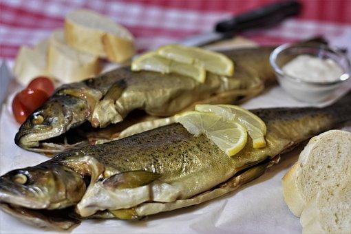 Fish, Trout, Smoked, Fang, Food, Fishing, Smoking