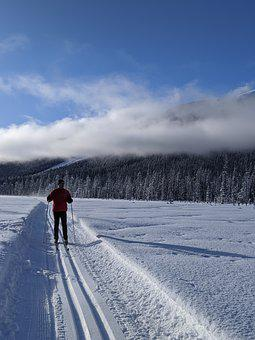 Cross-country Skiing, Winter, Snow, Skiing, Trail