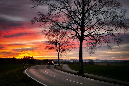 Evening Sun, Afterglow, Tree, Road, Sunset, Sun