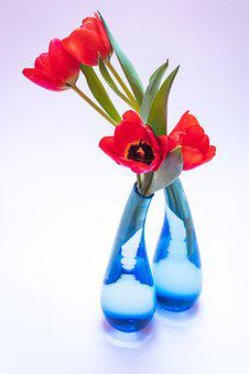 Tulip, Tulip Bouquet, Glass Vase, Blue, Spring Flower