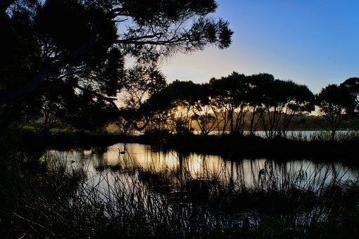 Twilight, Sunset, Dusk, Water, Horizon, Summer, Nature