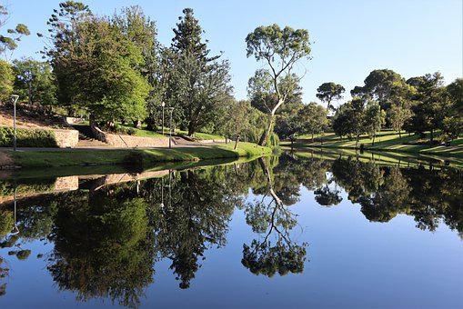 Peaceful, Adelaide, River, Torrens, Reflection