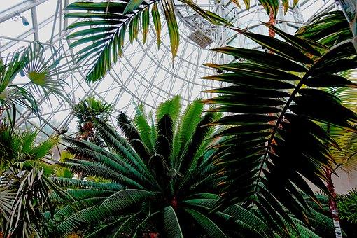 Biosphere, Botanical Garden, Artificial Environment