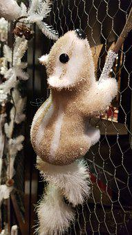 Christmas, Squirrel, Decoration, Animals, Cute, Funny
