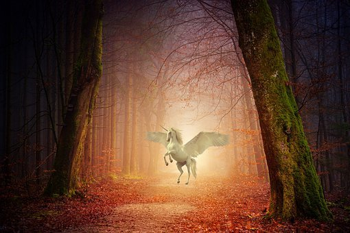 Unicorn, Fantasy, Tale, Fable, Story, Woods, Forrest