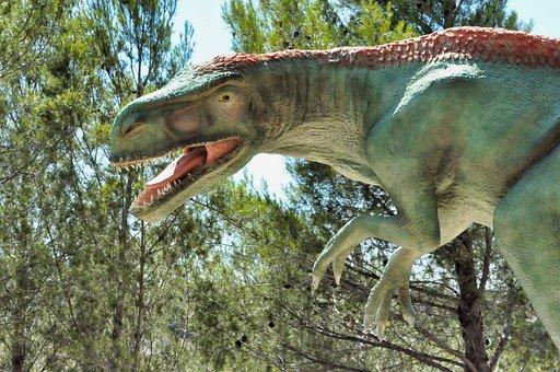 Dinosaur, Nature, Prehistoric, Fossil, Green
