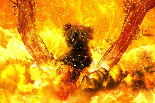 Fire, Horror, Catastrophe, Hell