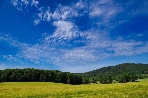 Landscape, Spring, Taunus, Nature