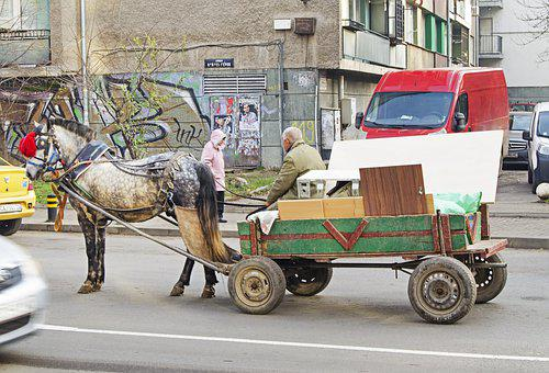 Street Photography, Wagon, Horse, Recycling, Bulgaria