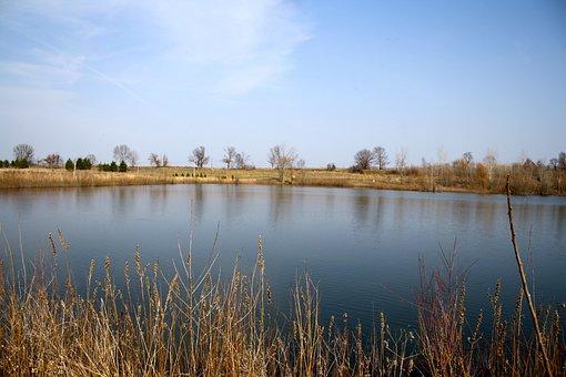 Lake, Sky, Water, Blue, Grass, Yellow